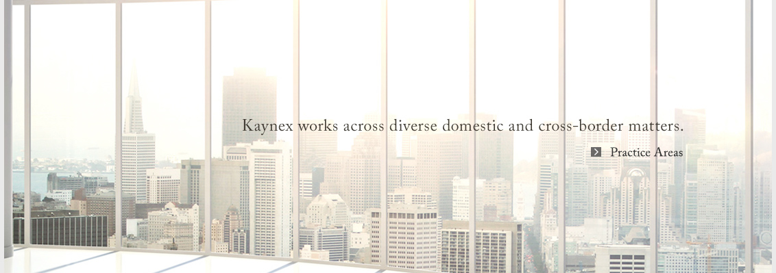 Kaynex works across diverse domestic and cross-border matters.